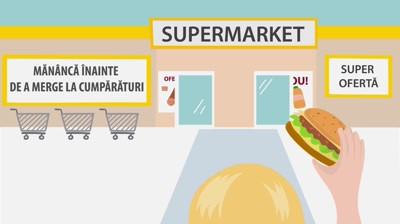 Food Waste   2D Flat Animation