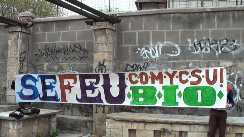 Avem apatie şi sarcasm. Adică un trend în comicsul românesc. Cel puțin așa zice Timotei de la SEFEU
