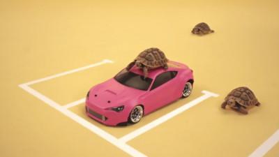 O lume roz, în care există locuri de parcare pentru toți