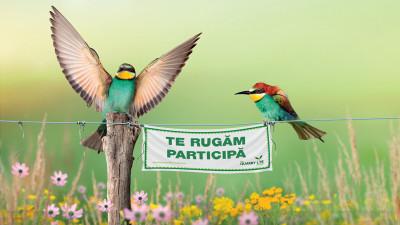 HeidelbergCement lansează a patra ediție Quarry Life Award, competiția internațională care promovează biodiversitatea în cariere