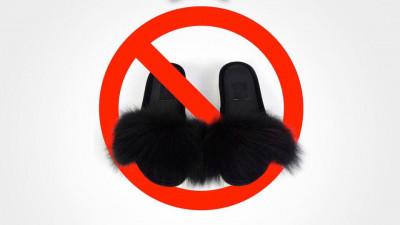 Nu e ok să-ți împachetezi veverița în folie cu bule și să o trimiți prin curier