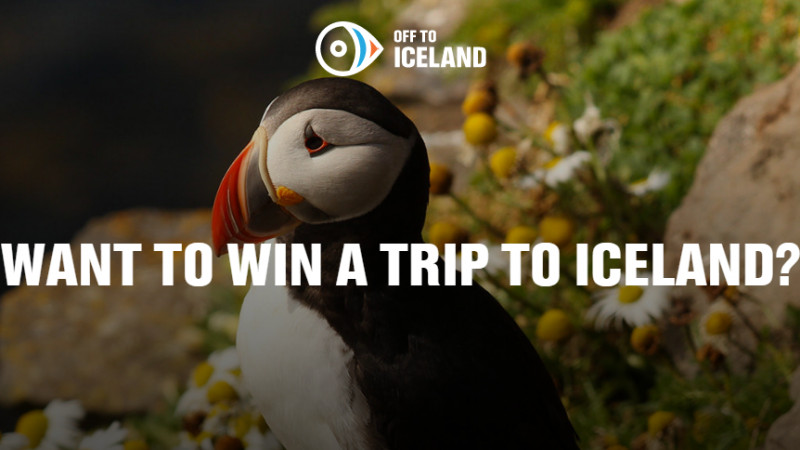 Pe moca in Islanda. Se cauta doi cetateni majori, vaccinati si cu drag de hashtag