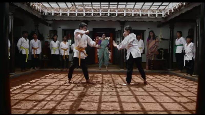 Un sapun invata fetele arte martiale