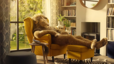 Locul unui leu este in sufragerie