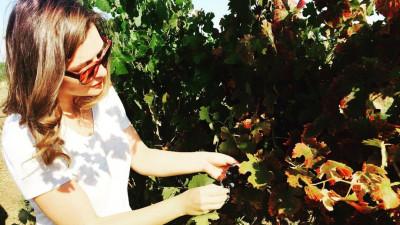 """[Gustul pasiunii] Un om de știință într-ale vinurilor. Marinela V. Ardelean: """"Când vine vorba de consum, prefer vinurile care nu depășesc aproximativ 25 de ani de viață"""""""