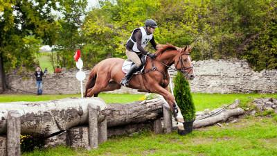 Se dă startul Karpatia Horse Show 2017. Trei zile de competiție, aventură și distracție pe Domeniul Cantacuzino de la Florești