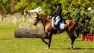 Karpathia Horse Show 2017: Zece mii de vizitatori, zeci de concurenți, un show de nivel internațional