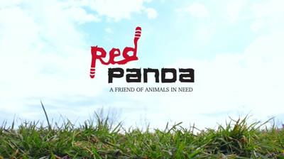 Asociatia Red Panda Romania - Prieten nepretuit