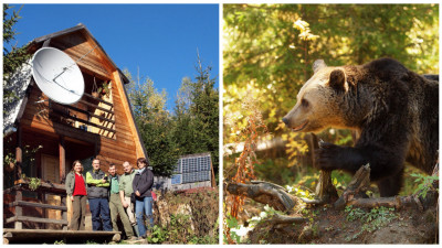 [Povești de crowdfunding] Două-trei clickuri și ești eroul puilor de urs din munții Hășmaș
