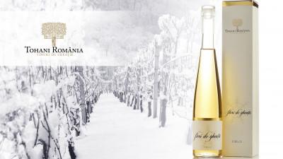 Când frigul, dansul si vinul merg mână în mână. Flori de Gheață, prima lansare TOHANI România din 2018