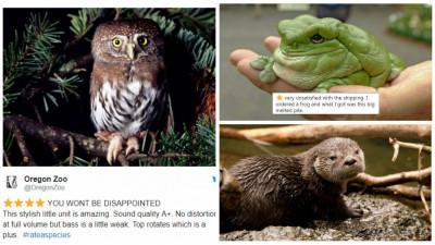 Oamenii de la Zoo sunt neserioși