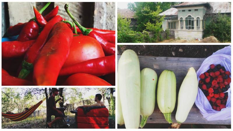 [Povești de crowdfunding] Dacă nu știați ce-i permacultura, băieții de la Perma Bârsoiu au o poveste lămuritoare