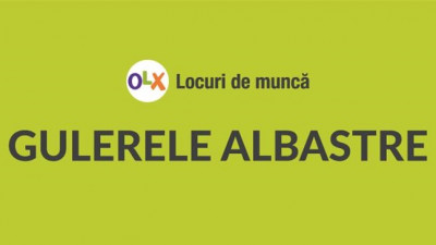 Gulerele albastre, mai pretențioase astăzi Studiu Reveal Marketing Research & OLX
