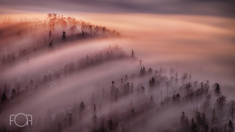 Prima ediție a concursului Fotograful Anului în România