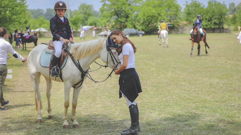 8 mii de spectatori și peste 100 de cai și ponei la primul eveniment ecvestru cu desfășurare pe 2 arene de spectacole