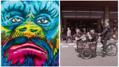 Rromii si bicicletele, o poveste cu Pegas si muzica