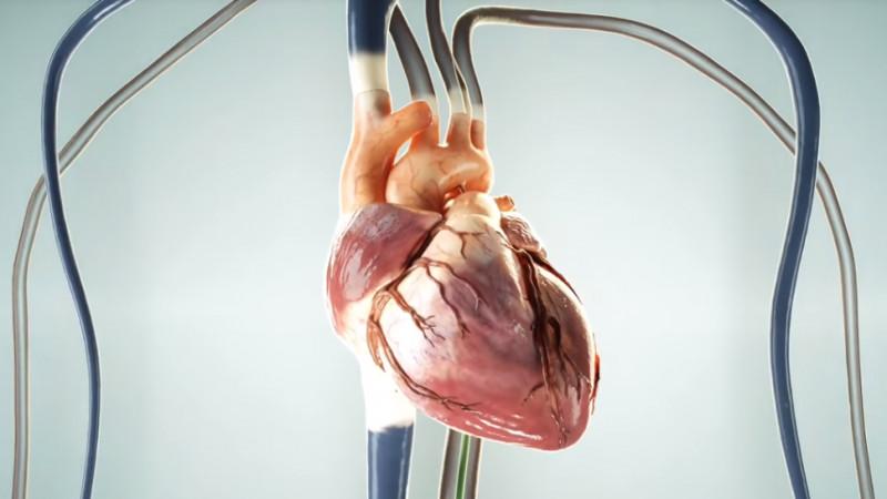 Holograma inimii schimbă modul în care pacienții români vor percepe operațiile cardiologice minim-invazive