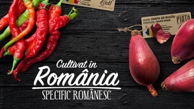 """Gustul legumelor de altă dată ajunge în comerțul modern prin proiectul """"Cultivat în România, specific românesc"""""""