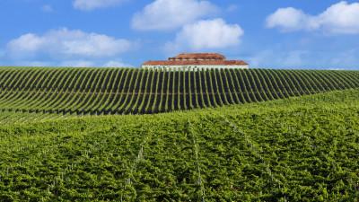Vinurile din gama Domeniile Recaș – Noul look al vinurilor cool