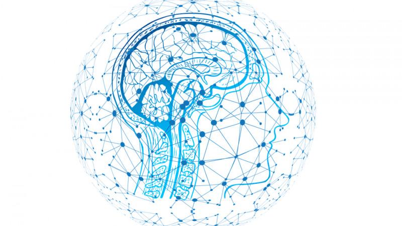 Neuromarketingul reduce riscurile pentru branduri