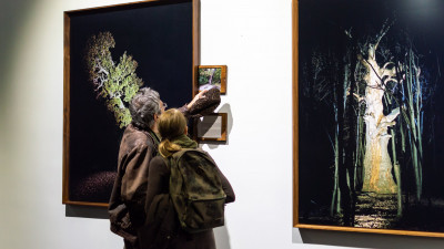 Arta, Facebookul si publicul