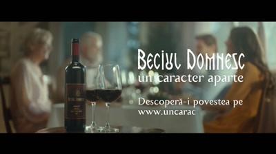 VINCON Romania - Descopera-i povestea! Beciul Domnesc