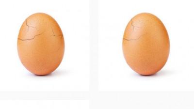 Secretul oului