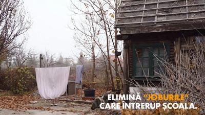 """Tuio semnează campania """"Alegeri imposibile"""" şi, împreună cu United Way Romania, ajută 6500 de copii defavorizaţi să aleagă educaţia"""