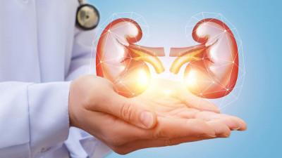 Ziua Mondială a Rinichiului. Imunoterapia poate schimba felul în care cancerul de rinichi este tratat