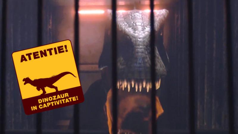[Case study] Benji Allosaurus, un proiect dezvoltat de Mind Treat Studios pentru Carrefour