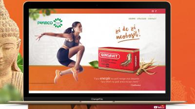 Social media & website - Ginsavit