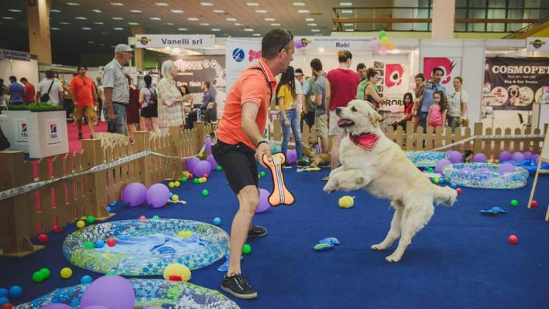 Prima asigurare pentru animale de companie se lansează la PetExpo