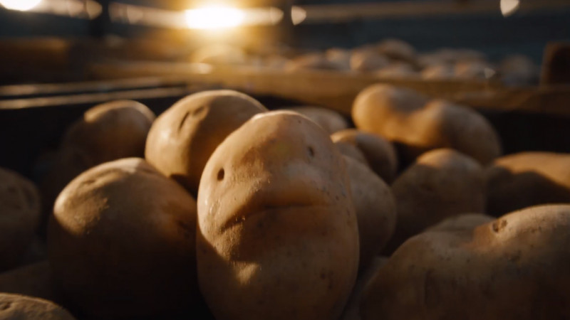 Te iubesc ca un cartof fierbinte