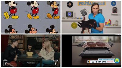 [România pe YouTube] Articolul 13, pisici ciufute și sfaturi pentru tinerii care vor să fie jurnaliști
