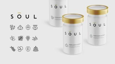 [Case-Study] Soul case up