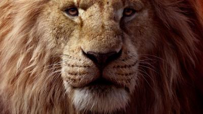 """""""The Lion King / Regele leu"""", evenimentul cinematografic al verii"""