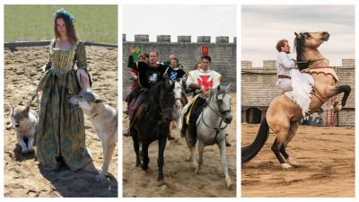 Basme cu cai, printese si cavaleri – varianta live-action