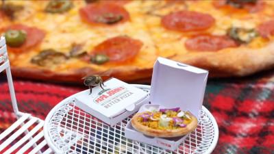 Albinele fac buzz pentru pizza