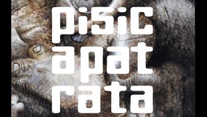 Expoziție personală PISICAPĂTRATĂ + la Imbold, Galeria