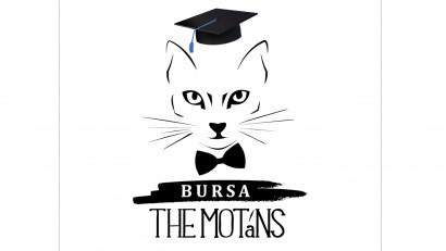 Primele Burse The Motans au fost acordate