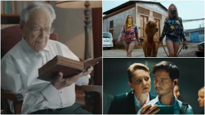 Libertate, alpaca, iubire. Cele mai populare reclame pe YouTube în România în 2019