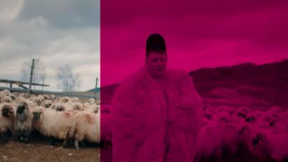 Ciobanul Ghiță, de la Vodafone, a trecut pe Telekom