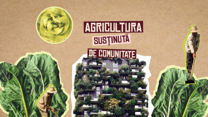 Hrană sănătoasă cu Asociația de Susținere a Agriculturii Țărănești (ASAT)