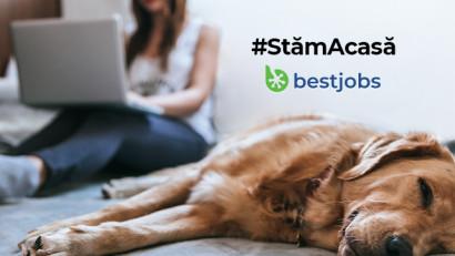 BestJobs: Anunțurile pentru voluntariat pot fi publicate gratuit până în 30 aprilie