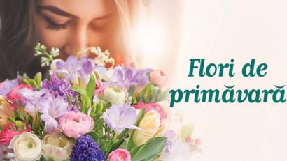 Flori de Florii: Colecția Floria.ro pentru ceipeste 1 milion de români care își serbează onomastica