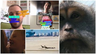 [Ad List] Oameni și animale