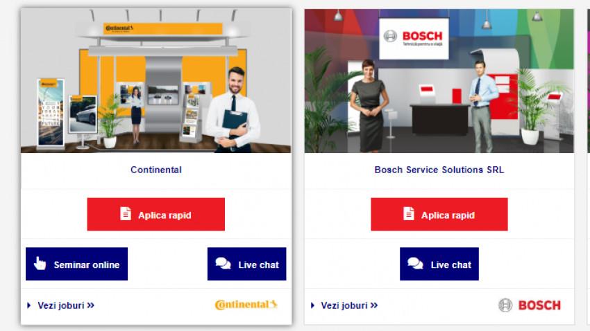 Top 5 domenii în care recrutează companiile de la Angajatori de TOP Timișoara ONLINE