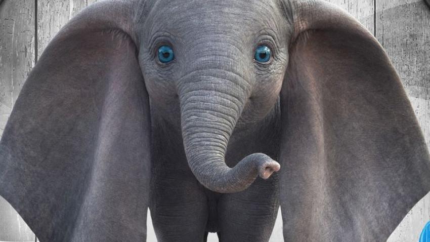 """Îndrăgitul elefănțel """"Dumbo"""" vine la Film Now de Ziua Copilului"""