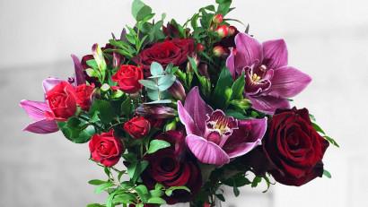 Floria.ro lansează Jungla Urbană, o colecție care te poartă în toate colțurile lumii