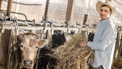 """Danone România continuă investițiile în dezvoltarea a peste 180 de gospodari locali și dublează producția de lapte realizată de aceștia, ca parte din programul """"O șansă pentru familia ta"""""""